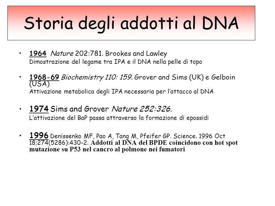 Storia degli addotti al DNA 1964 Nature 202:781. Brookes and Lawley Dimostrazione del legame tra IPA e il DNA nella pelle di topo 1968-69 Biochemistry