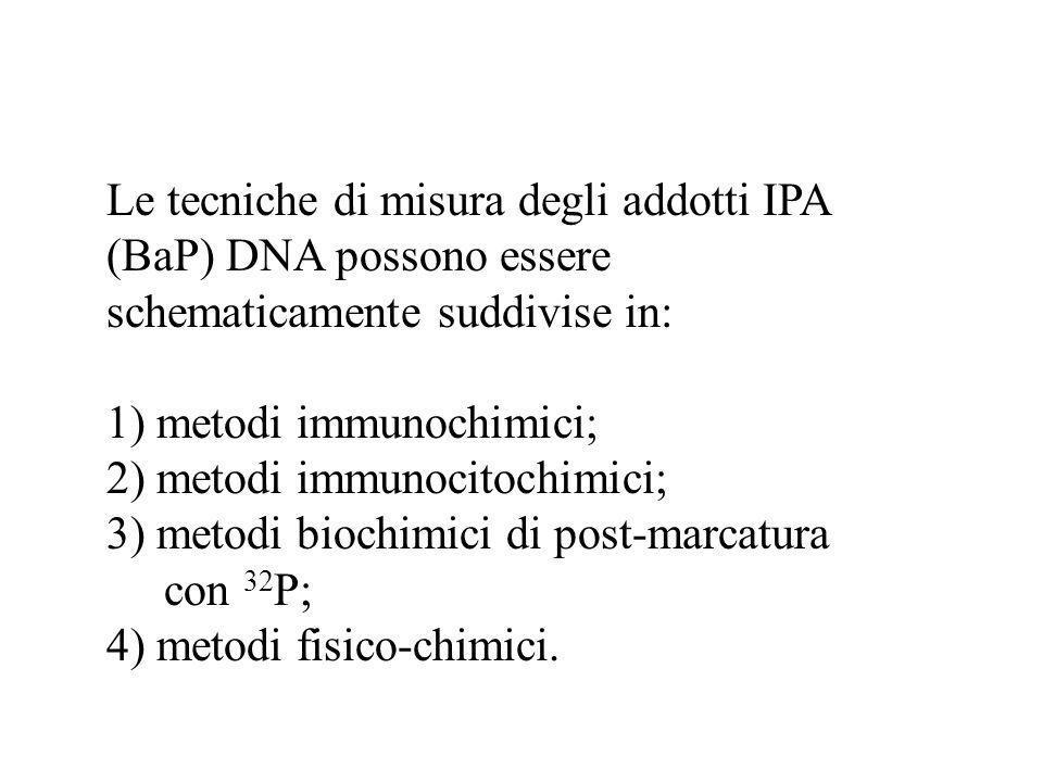 Le tecniche di misura degli addotti IPA (BaP) DNA possono essere schematicamente suddivise in: 1) metodi immunochimici; 2) metodi immunocitochimici; 3
