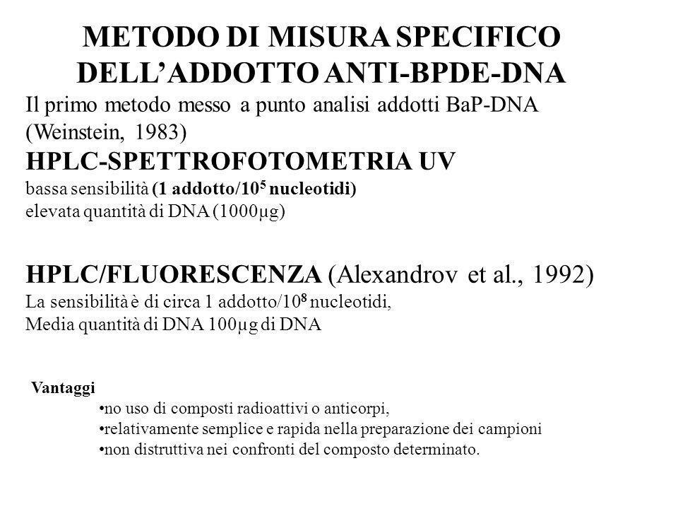 METODO DI MISURA SPECIFICO DELLADDOTTO ANTI-BPDE-DNA Il primo metodo messo a punto analisi addotti BaP-DNA (Weinstein, 1983) HPLC-SPETTROFOTOMETRIA UV