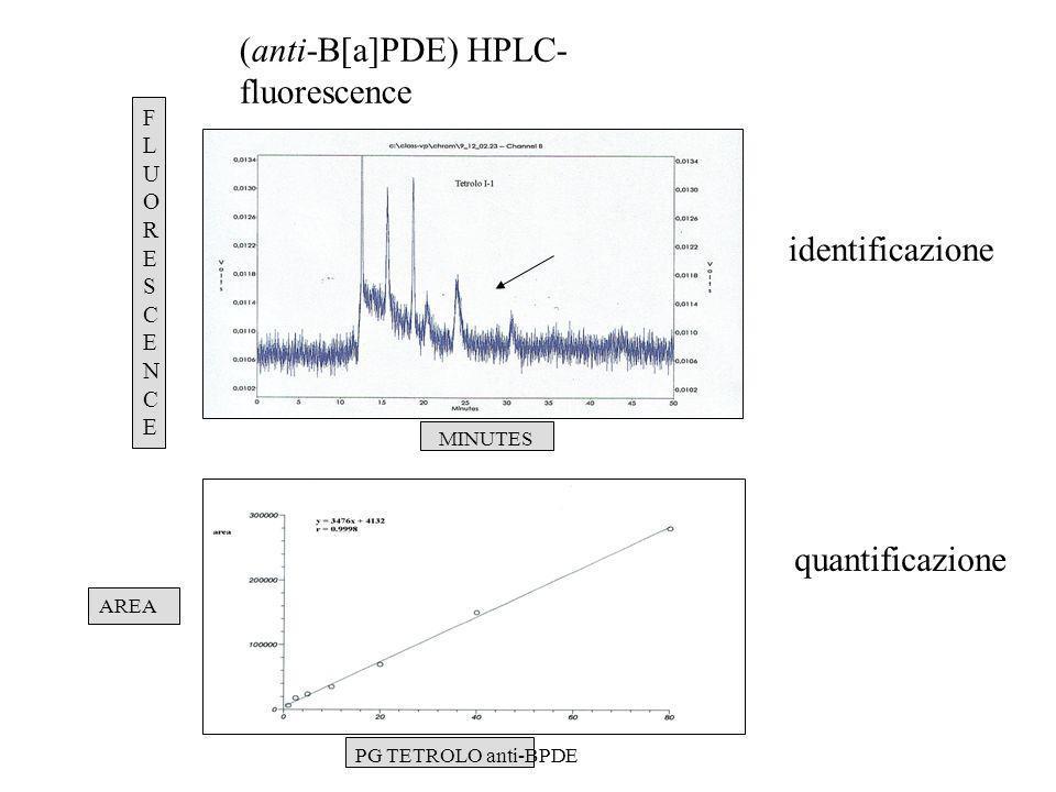 (anti-B[a]PDE) HPLC- fluorescence AREA PG TETROLO anti-BPDE MINUTES FLUORESCENCEFLUORESCENCE identificazione quantificazione