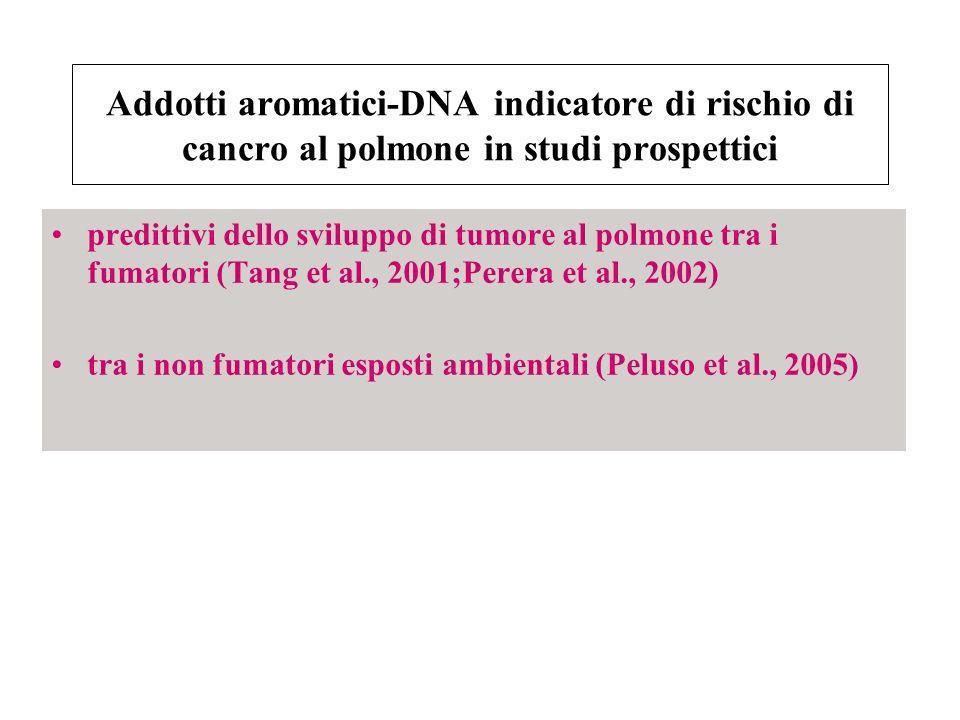 Addotti aromatici-DNA indicatore di rischio di cancro al polmone in studi prospettici predittivi dello sviluppo di tumore al polmone tra i fumatori (T