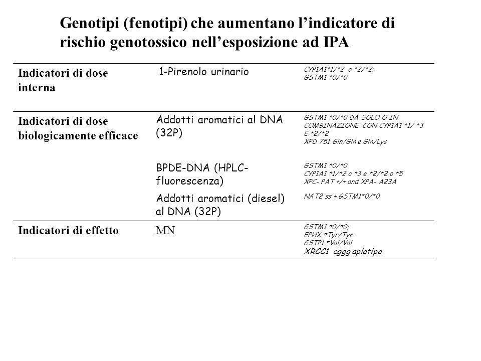 CYP1A1*1/*2 o *2/*2; GSTM1 *0/*0 1-Pirenolo urinario Indicatori di dose interna GSTM1 *0/*0 CYP1A1 *1/*2 o *3 e *2/*2 o *5 XPC- PAT +/+ and XPA- A23A