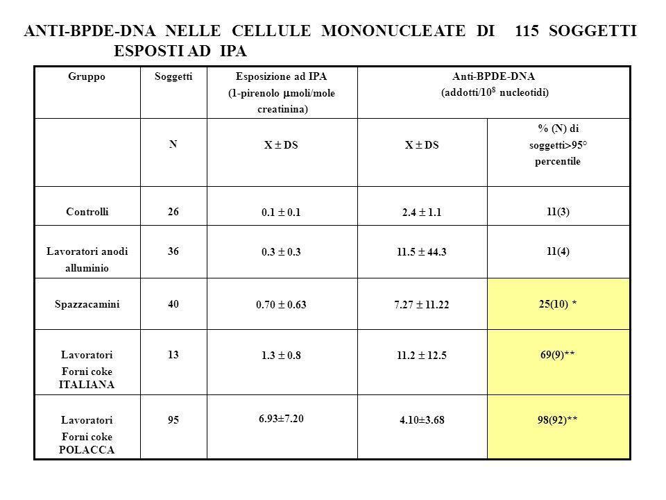 98(92)**4.10±3.68 6.93±7.20 95Lavoratori Forni coke POLACCA 69(9)** 11.2 12.51.3 0.8 13Lavoratori Forni coke ITALIANA 25(10) * 11(4) 11(3) % (N) di so