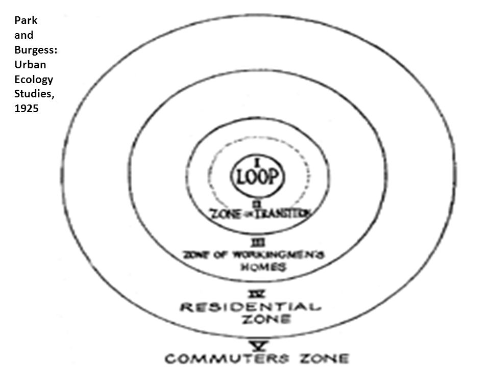 Park and Burgess: Urban Ecology Studies, 1925