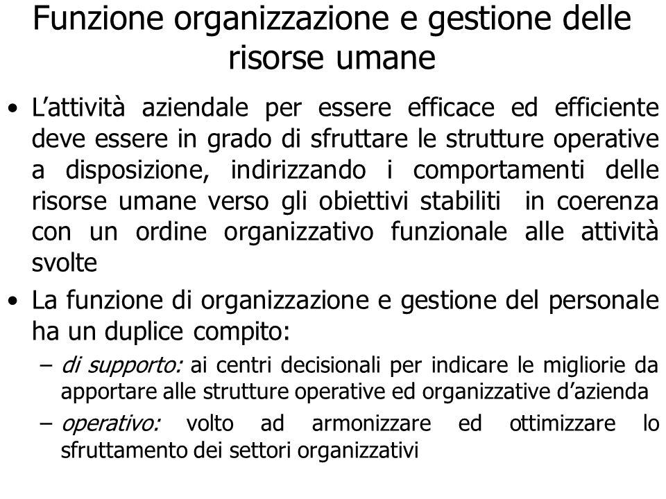 Funzione organizzazione e gestione delle risorse umane Lattività aziendale per essere efficace ed efficiente deve essere in grado di sfruttare le stru