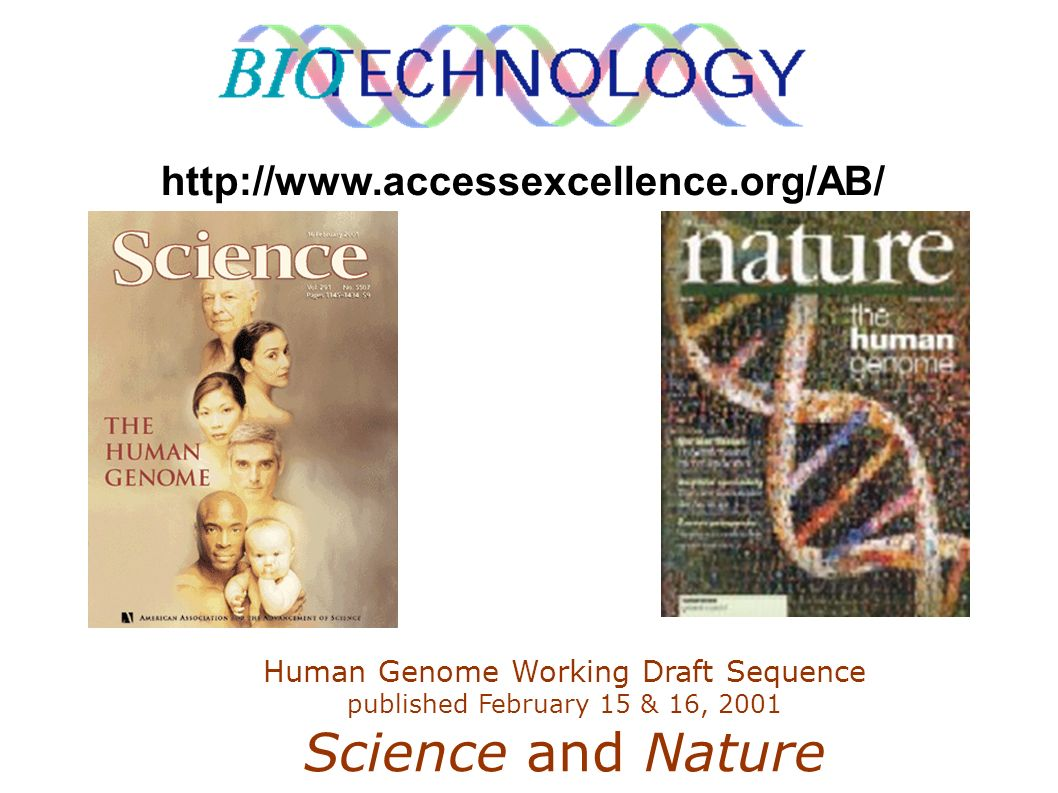 http://www.accessexcellence.org/AB/ Human Genome Working Draft Sequence published February 15 & 16, 2001 Science and Nature