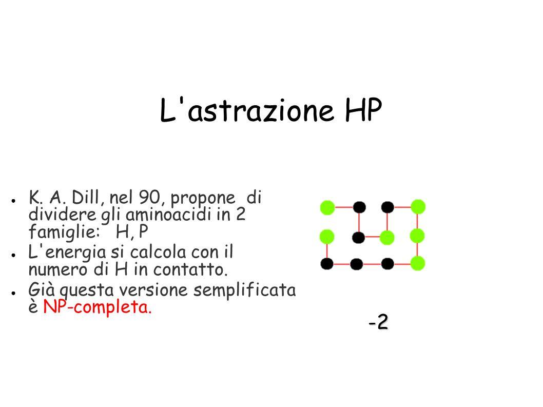 L'astrazione HP K. A. Dill, nel 90, propone di dividere gli aminoacidi in 2 famiglie: H, P L'energia si calcola con il numero di H in contatto. Già qu