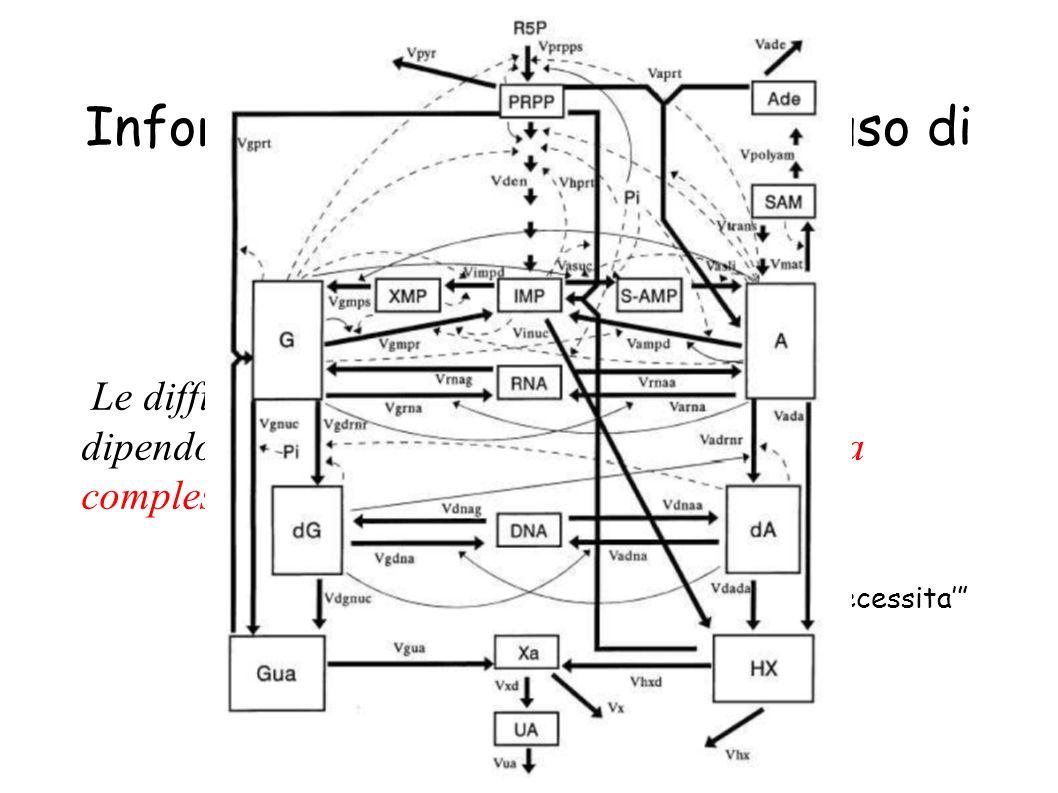 Systems Biology: Informatica e costruzione ed uso di modelli Le difficolta di comprensione in Biologia non dipendono, come in fisica, dalla scala ma d