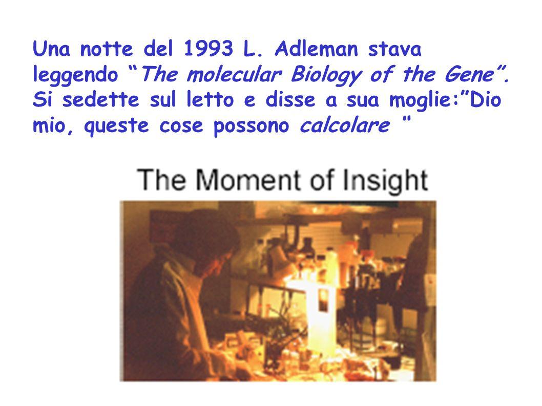 Una notte del 1993 L. Adleman stava leggendo The molecular Biology of the Gene. Si sedette sul letto e disse a sua moglie:Dio mio, queste cose possono