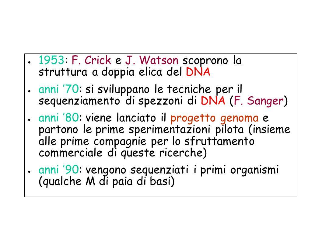 1953: F. Crick e J. Watson scoprono la struttura a doppia elica del DNA anni 70: si sviluppano le tecniche per il sequenziamento di spezzoni di DNA (F