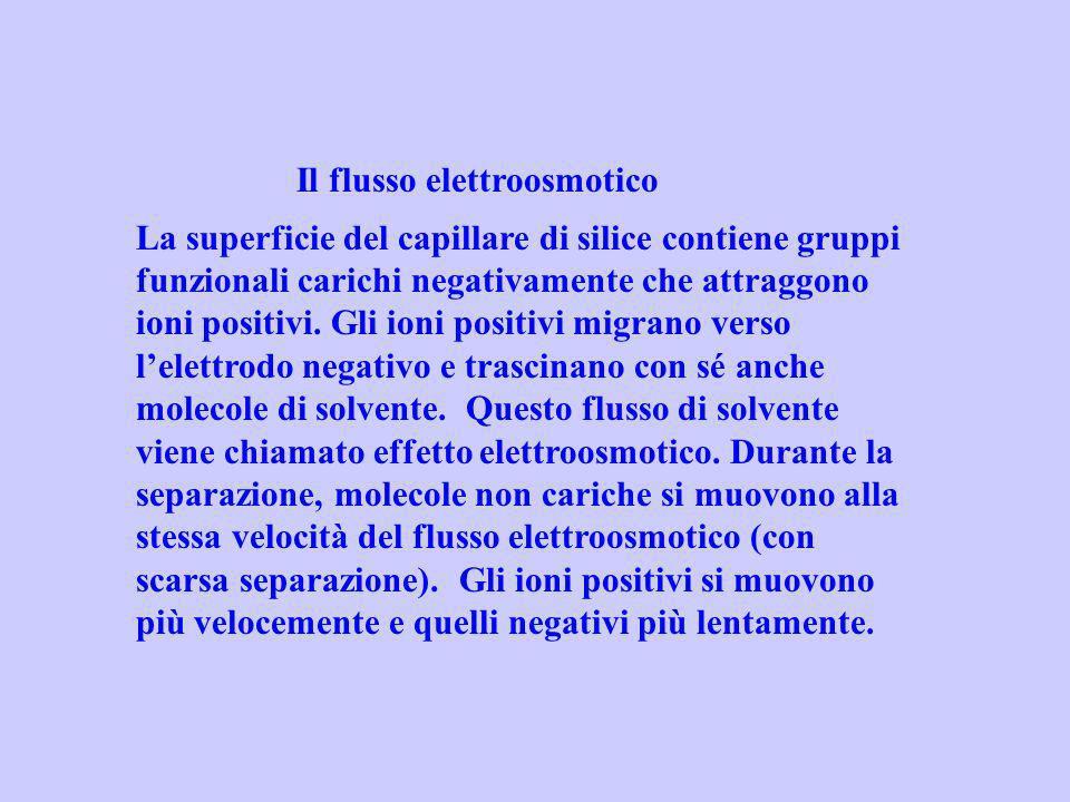 Il flusso elettroosmotico La superficie del capillare di silice contiene gruppi funzionali carichi negativamente che attraggono ioni positivi. Gli ion