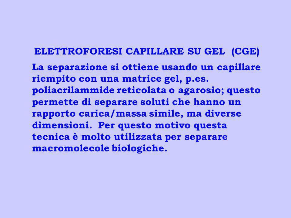 ELETTROFORESI CAPILLARE SU GEL (CGE) La separazione si ottiene usando un capillare riempito con una matrice gel, p.es. poliacrilammide reticolata o ag