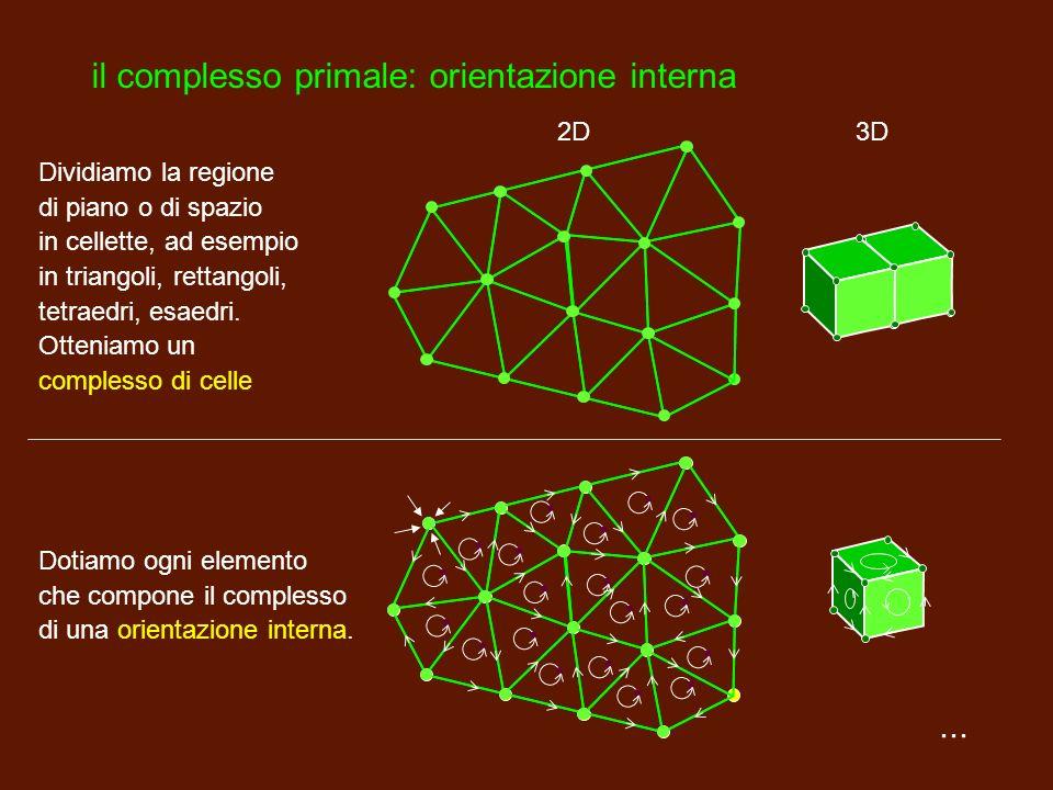 ... I complessi di celle ora entrano in campo i complessi di celle