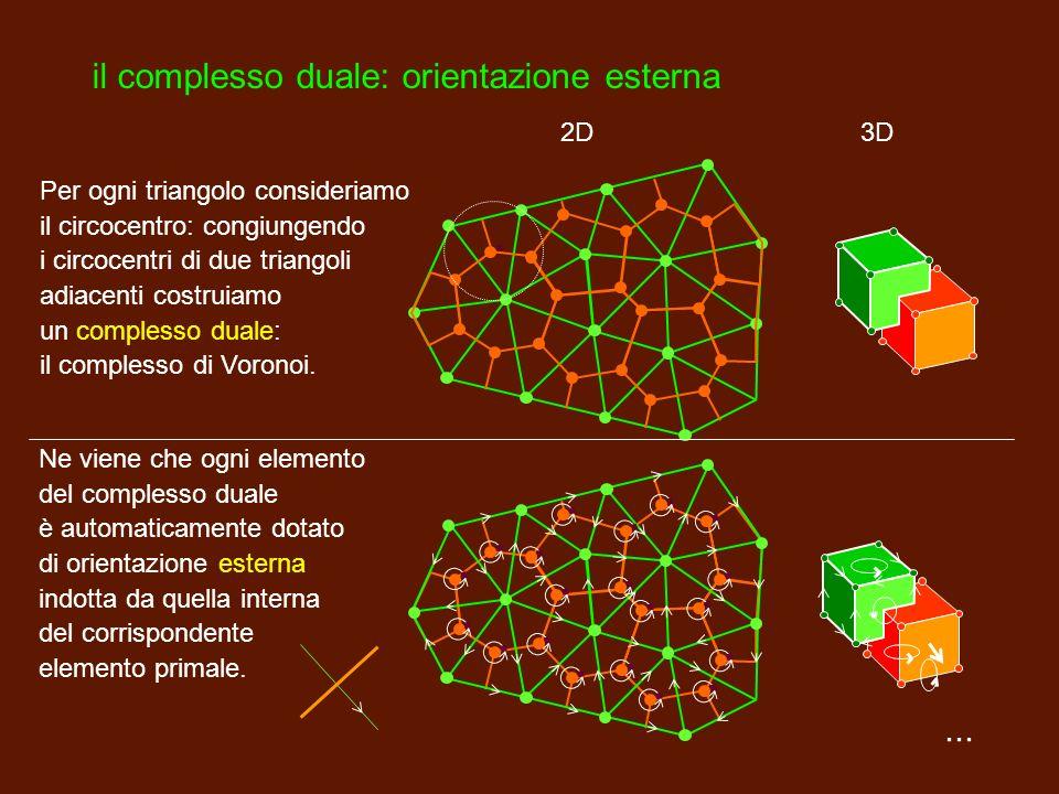 ... il complesso primale: orientazione interna Dotiamo ogni elemento che compone il complesso di una orientazione interna. Dividiamo la regione di pia