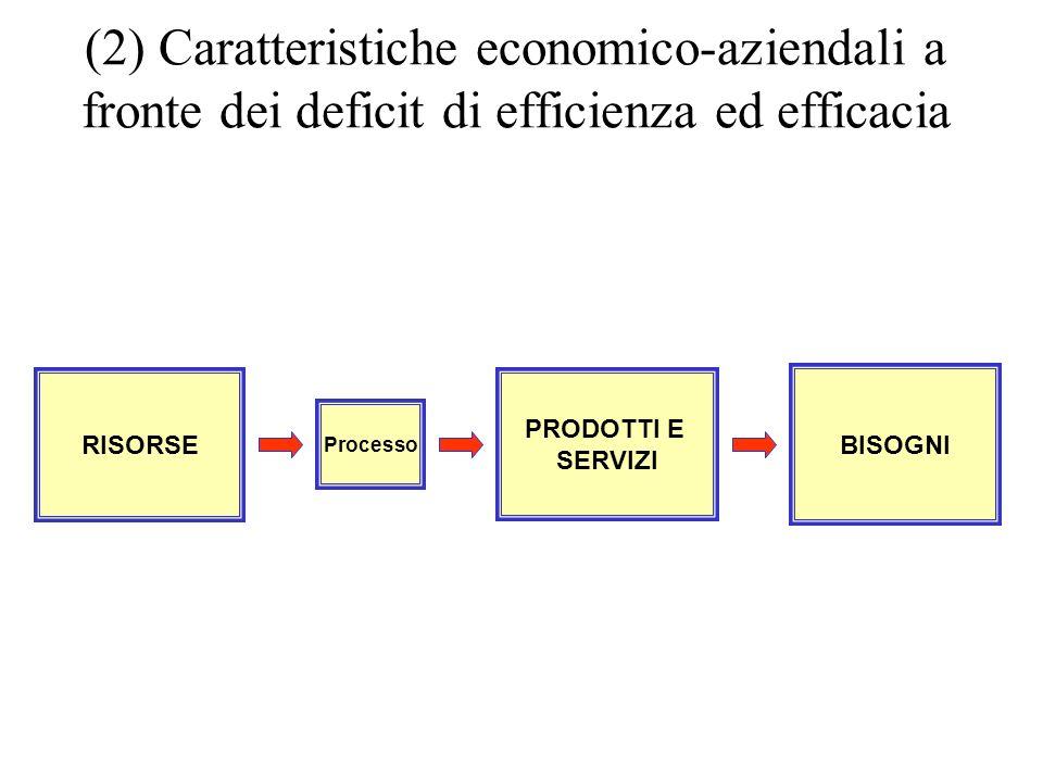 BISOGNI PRODOTTI E SERVIZI Processo RISORSE (2) Caratteristiche economico-aziendali a fronte dei deficit di efficienza ed efficacia