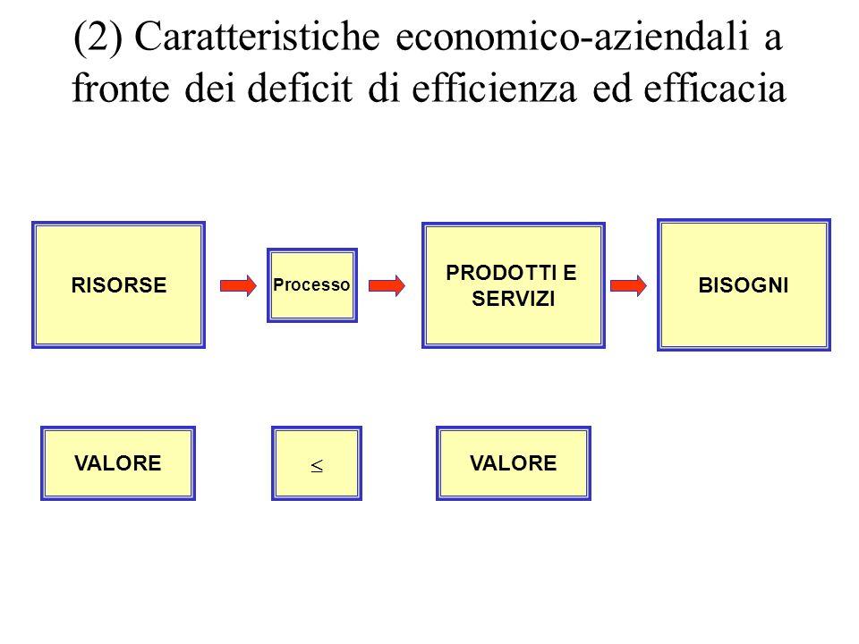 VALORE (2) Caratteristiche economico-aziendali a fronte dei deficit di efficienza ed efficacia BISOGNI PRODOTTI E SERVIZI Processo RISORSE