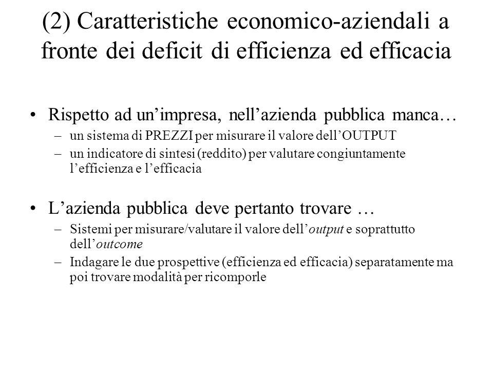 (2) Caratteristiche economico-aziendali a fronte dei deficit di efficienza ed efficacia Rispetto ad unimpresa, nellazienda pubblica manca… –un sistema