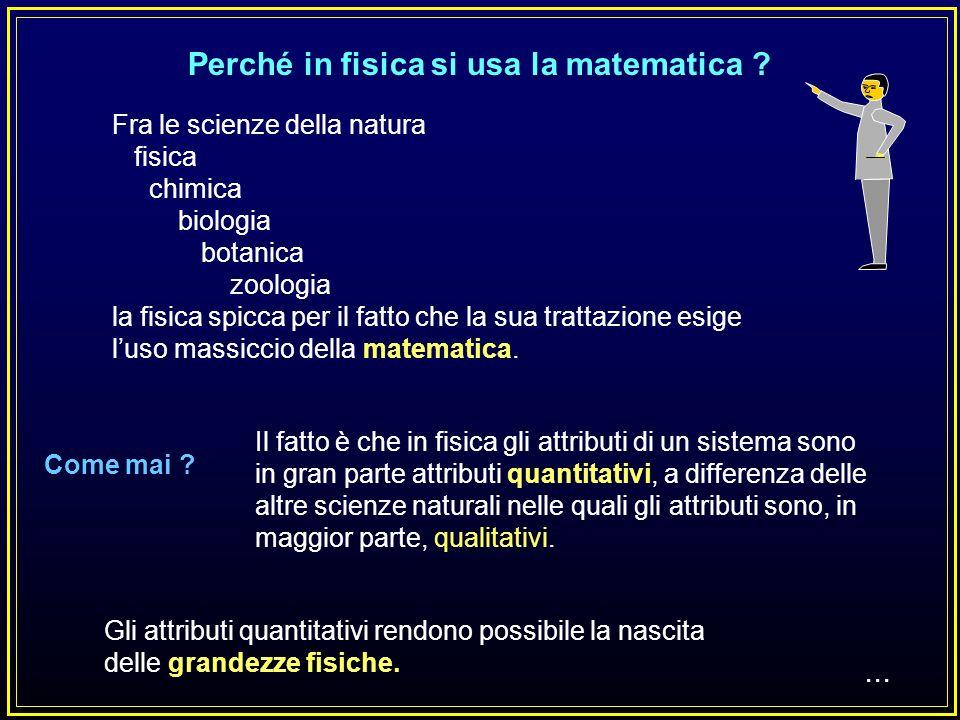 Perché in fisica si usa la matematica .