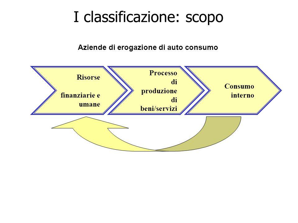 Processo di produzione di beni/servizi Risorse finanziarie e umane Consumo interno Aziende di erogazione di auto consumo I classificazione: scopo