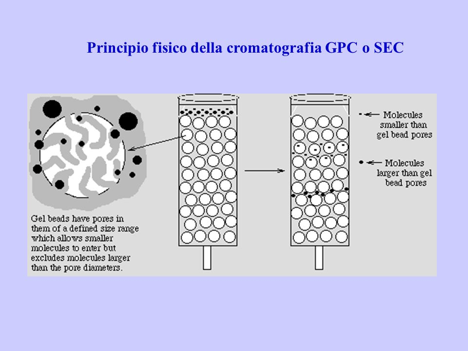 Principio fisico della cromatografia GPC o SEC