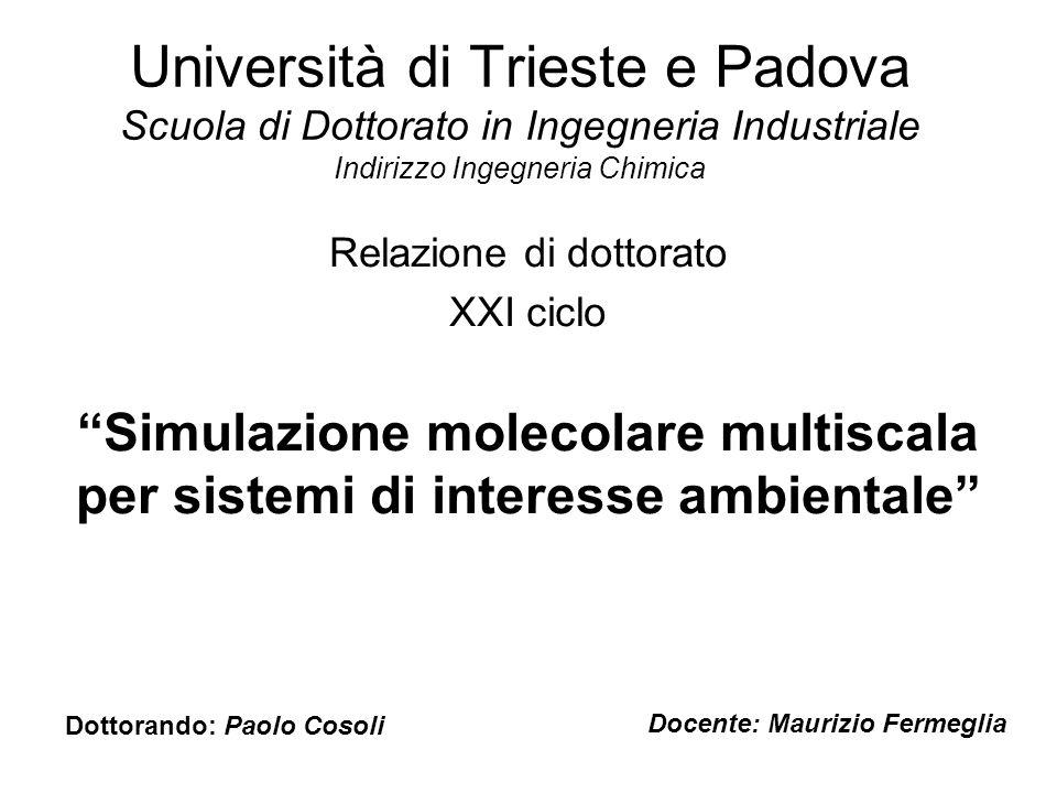Università di Trieste e Padova Scuola di Dottorato in Ingegneria Industriale Indirizzo Ingegneria Chimica Relazione di dottorato XXI ciclo Simulazione