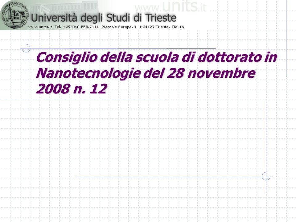 Consiglio della scuola di dottorato in Nanotecnologie del 28 novembre 2008 n. 12