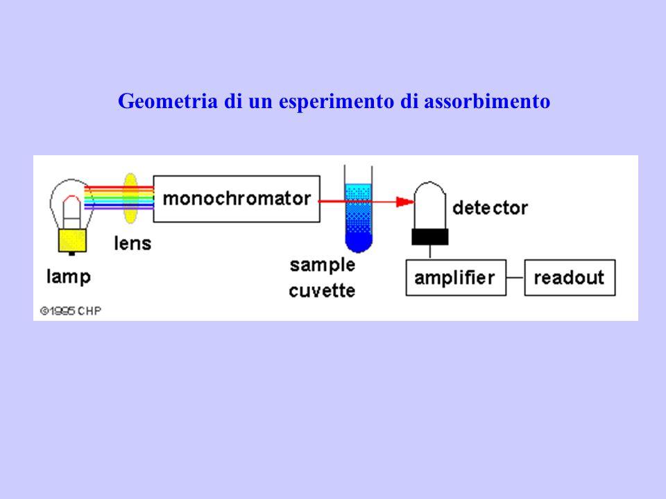 Geometria di un esperimento di assorbimento