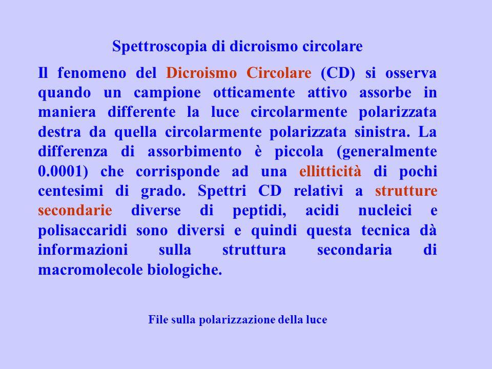 Spettroscopia di dicroismo circolare Il fenomeno del Dicroismo Circolare (CD) si osserva quando un campione otticamente attivo assorbe in maniera diff