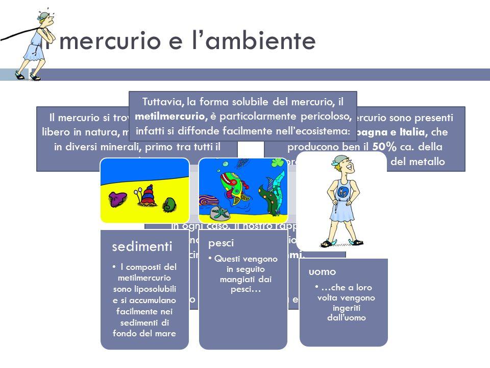 Il mercurio e lambiente Il mercurio si trova molto raramente libero in natura, ma può essere trovato in diversi minerali, primo tra tutti il cinabro G