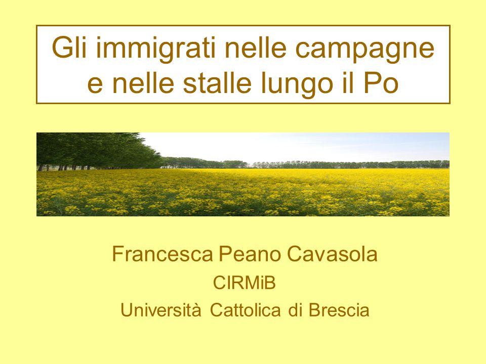 Gli immigrati nelle campagne e nelle stalle lungo il Po Francesca Peano Cavasola CIRMiB Università Cattolica di Brescia