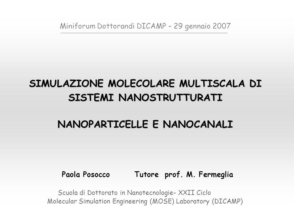SIMULAZIONE MULTISCALA Meccanica Quantistica (elettroni ) Meccanica molecolare (atomi) Modellazione di mesoscala (insiemi di atomi o molecole) Simulazione di processo FEM Engineering design 1Å LUNGHEZZE CARATTERISTICHE 1nm 1μm1μm 1mm1m anni ore minuti secondi microsecondi nanosecondi picosecondi femtosecondi Simulazione molecolare multiscala di sistemi nanostrutturati Scuola di dottorato in Nanotcnologie – XXII ciclo 29 gennaio 2007Paola Posocco Meccanica Quantistica (elettroni ) Meccanica molecolare (atomi) Modellazione di mesoscala (insiemi di atomi o molecole) Simulazione di processo FEM Engineering design 1Å TEMPI CARATTERISTICI 1nm 1μm1μm 1mm1m anni ore minuti secondi microsecondi nanosecondi picosecondi femtosecondi