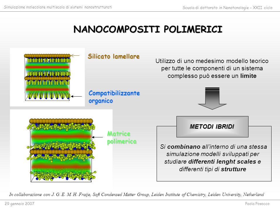 NANOCOMPOSITI POLIMERICI NANOCOMPOSITI POLIMERICI In collaborazione con J. G. E. M. H. Fraije, Soft Condensed Matter Group, Leiden Institute of Chemis