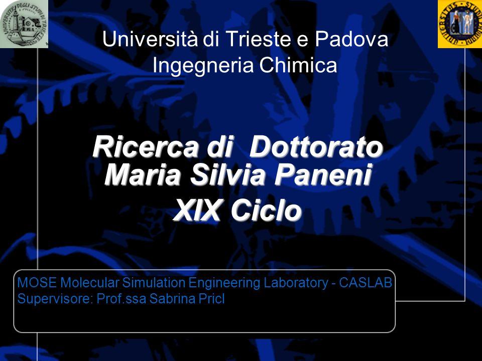 Università di Trieste e Padova Ingegneria Chimica Ricerca di Dottorato Maria Silvia Paneni XIX Ciclo MOSE Molecular Simulation Engineering Laboratory