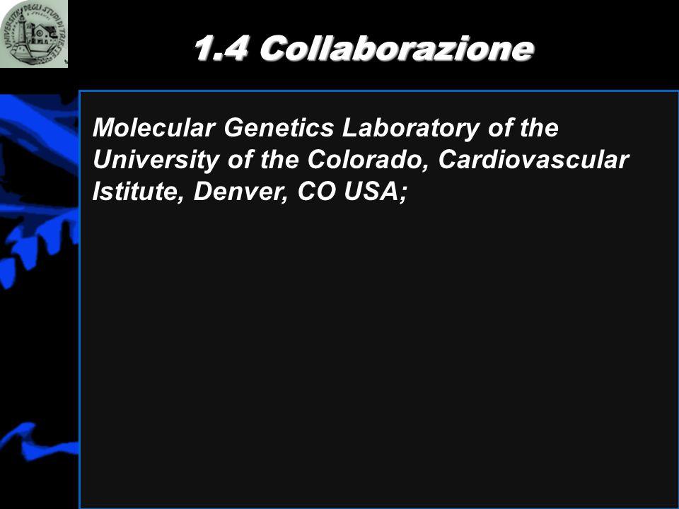 1.4 Collaborazione Molecular Genetics Laboratory of the University of the Colorado, Cardiovascular Istitute, Denver, CO USA;