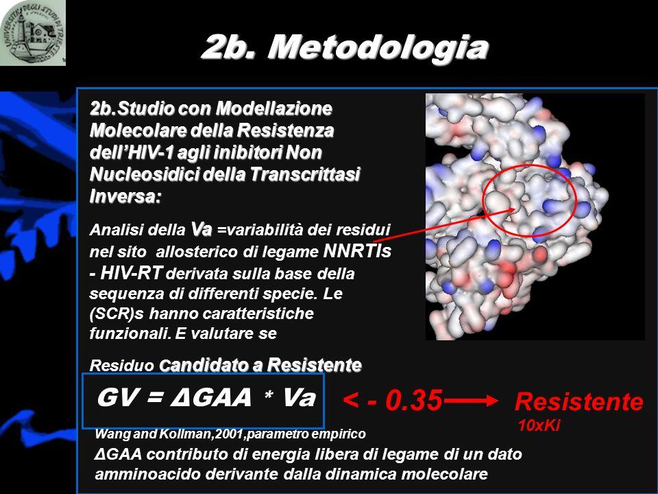 2b. Metodologia 2b.Studio con Modellazione Molecolare della Resistenza dellHIV-1 agli inibitori Non Nucleosidici della Transcrittasi Inversa: Va Anali