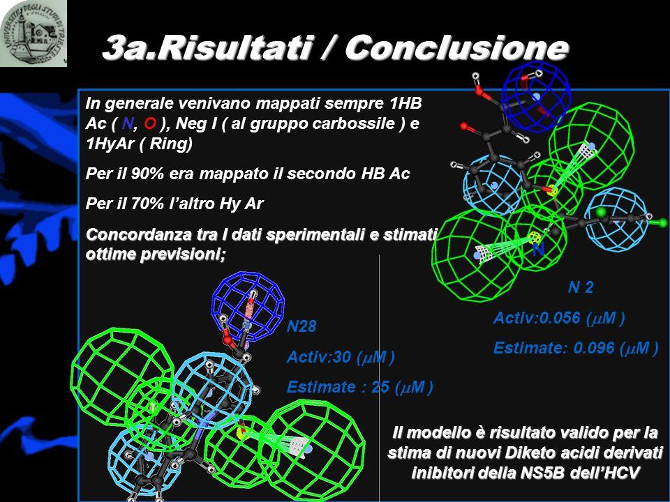 3a.Risultati / Conclusione N In generale venivano mappati sempre 1HB Ac ( N, O ), Neg I ( al gruppo carbossile ) e 1HyAr ( Ring) Per il 90% era mappat