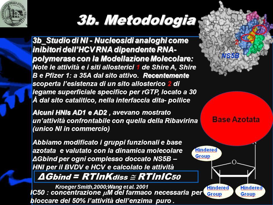 3b_Studio di NI - Nucleosidi analoghi come inibitori dellHCV RNA dipendente RNA- polymerasecon la Modellazione Molecolare: 3b_Studio di NI - Nucleosid