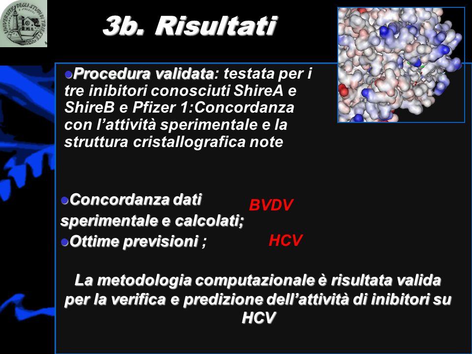 3b. Risultati HCV BVDV Procedura validata Procedura validata: testata per i tre inibitori conosciuti ShireA e ShireB e Pfizer 1:Concordanza con lattiv