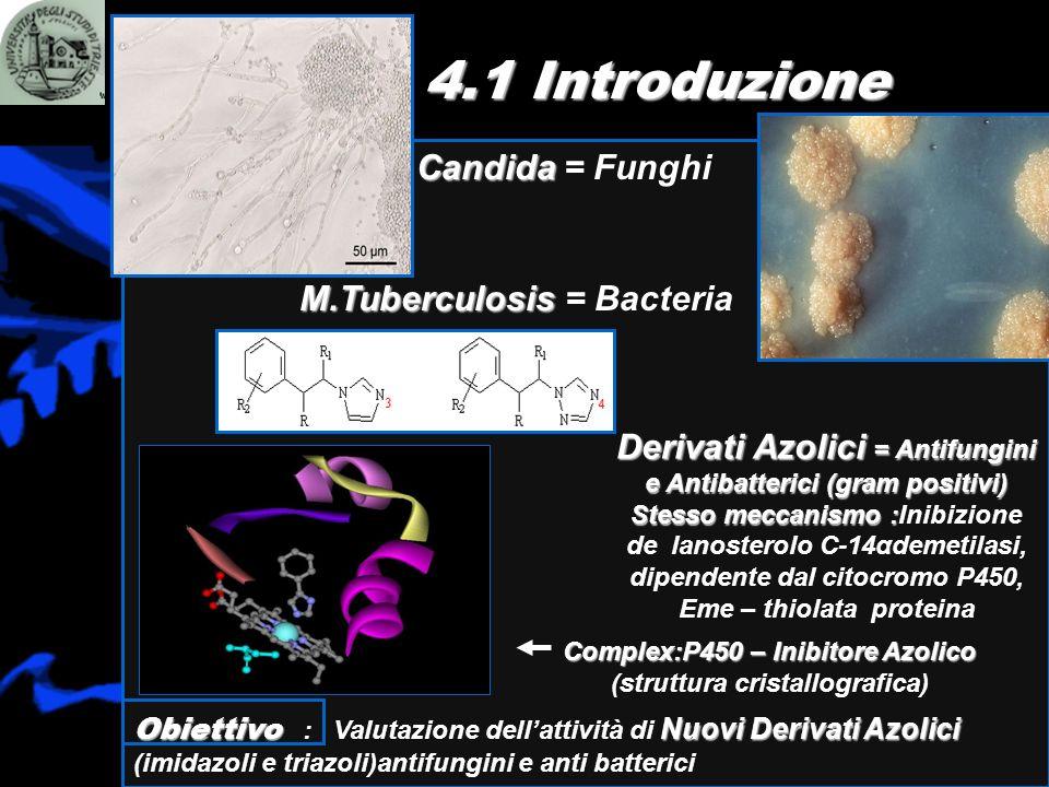 4.1 Introduzione M.Tuberculosis M.Tuberculosis = Bacteria Derivati Azolici = Antifungini e Antibatterici (gram positivi) Stesso meccanismo : Stesso me