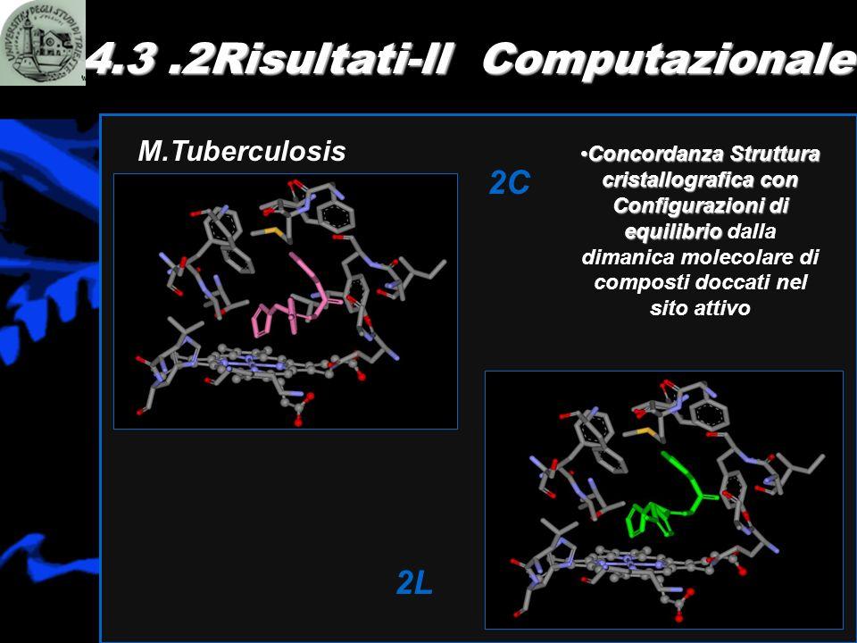 4.3.2Risultati-ll Computazionale M.Tuberculosis 2C 2L Concordanza Struttura cristallografica con Configurazioni di equilibrioConcordanza Struttura cri