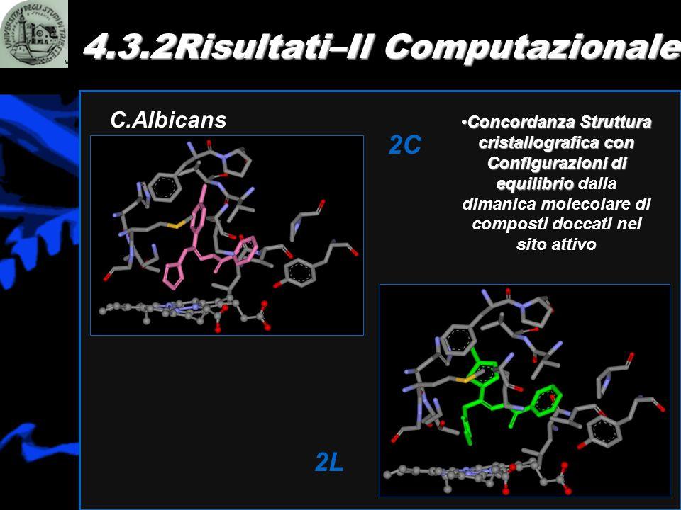 4.3.2Risultati–Il Computazionale C.Albicans 2C 2L Concordanza Struttura cristallografica con Configurazioni di equilibrioConcordanza Struttura cristal