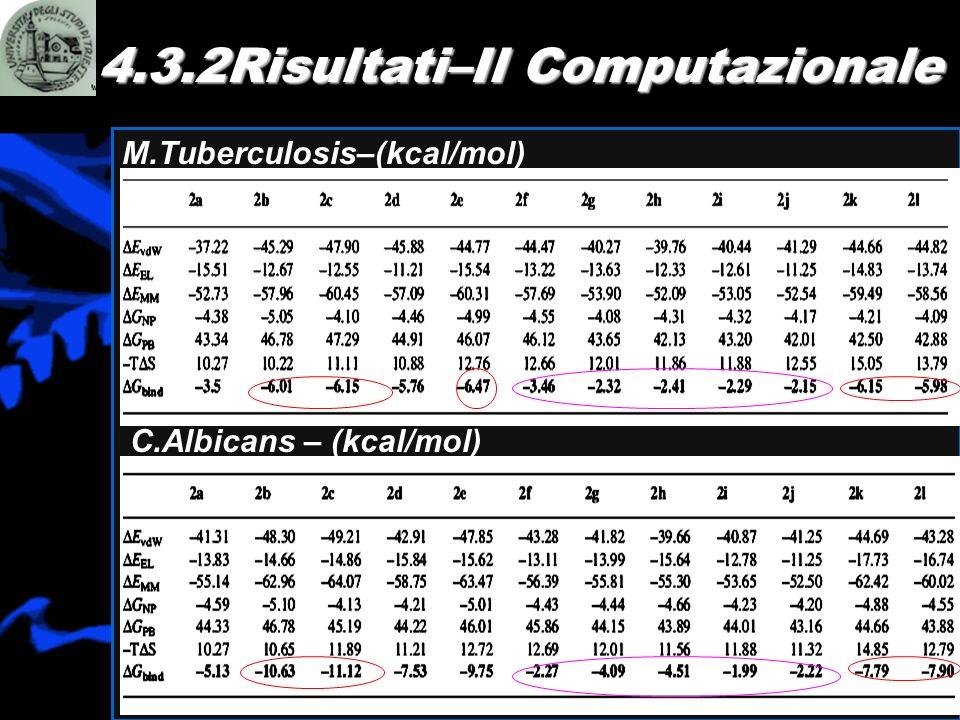 M.Tuberculosis–(kcal/mol) 4.3.2Risultati–Il Computazionale C.Albicans – (kcal/mol)