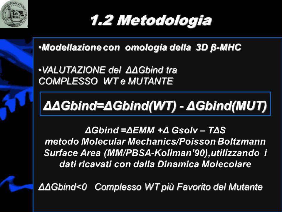 1.2 Metodologia Modellazione con omologia della 3D β-MHCModellazione con omologia della 3D β-MHC VALUTAZIONE del ΔΔGbind traVALUTAZIONE del ΔΔGbind tr