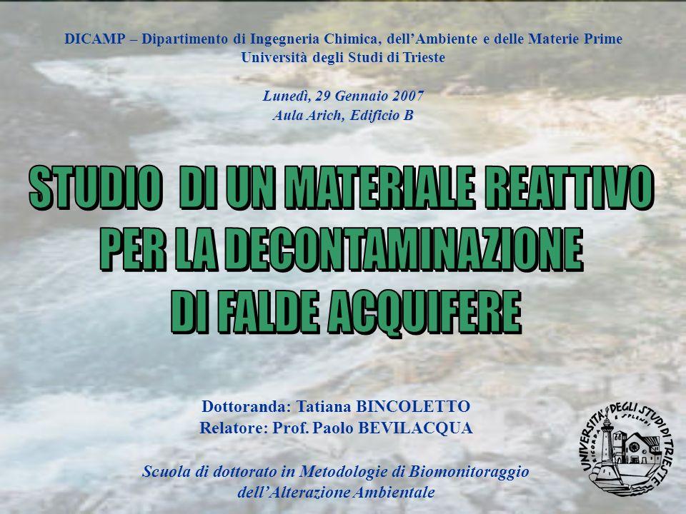 DICAMP – Dipartimento di Ingegneria Chimica, dellAmbiente e delle Materie Prime Università degli Studi di Trieste Lunedì, 29 Gennaio 2007 Aula Arich,