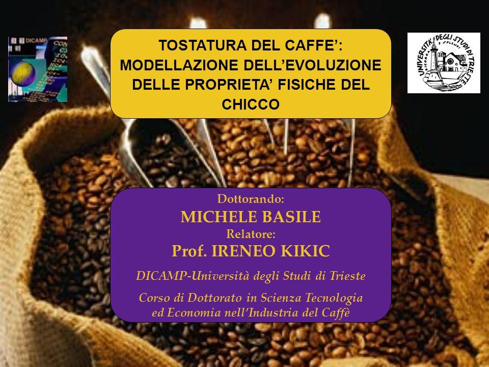 Dottorando: MICHELE BASILE Relatore: Prof. IRENEO KIKIC DICAMP-Università degli Studi di Trieste Corso di Dottorato in Scienza Tecnologia ed Economia