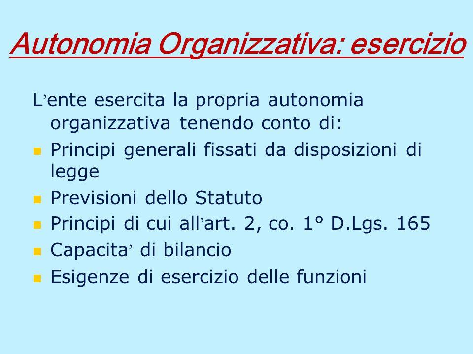 La microorganizzazione Larticolazione e lorganizzazione interna delle strutture interne ai servizi Incarichi di direzione delle strutture interne ai servizi Distribuzione delle risorse tra gli uffici Organizzazione del lavoro Gestione del personale