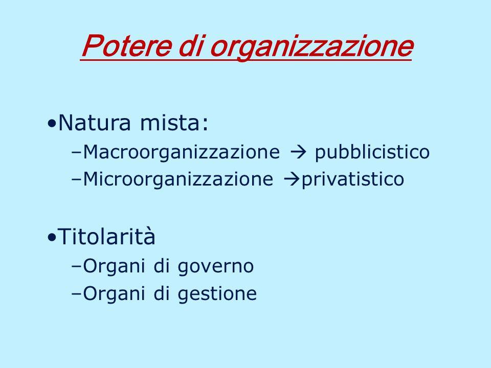 Autonomia Organizzativa: esercizio L ente esercita la propria autonomia organizzativa tenendo conto di: Principi generali fissati da disposizioni di legge Previsioni dello Statuto Principi di cui all art.
