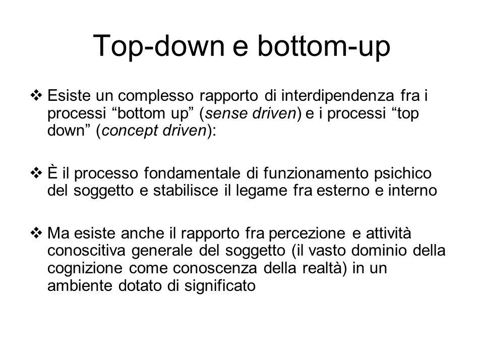 Top-down e bottom-up Esiste un complesso rapporto di interdipendenza fra i processi bottom up (sense driven) e i processi top down (concept driven): È