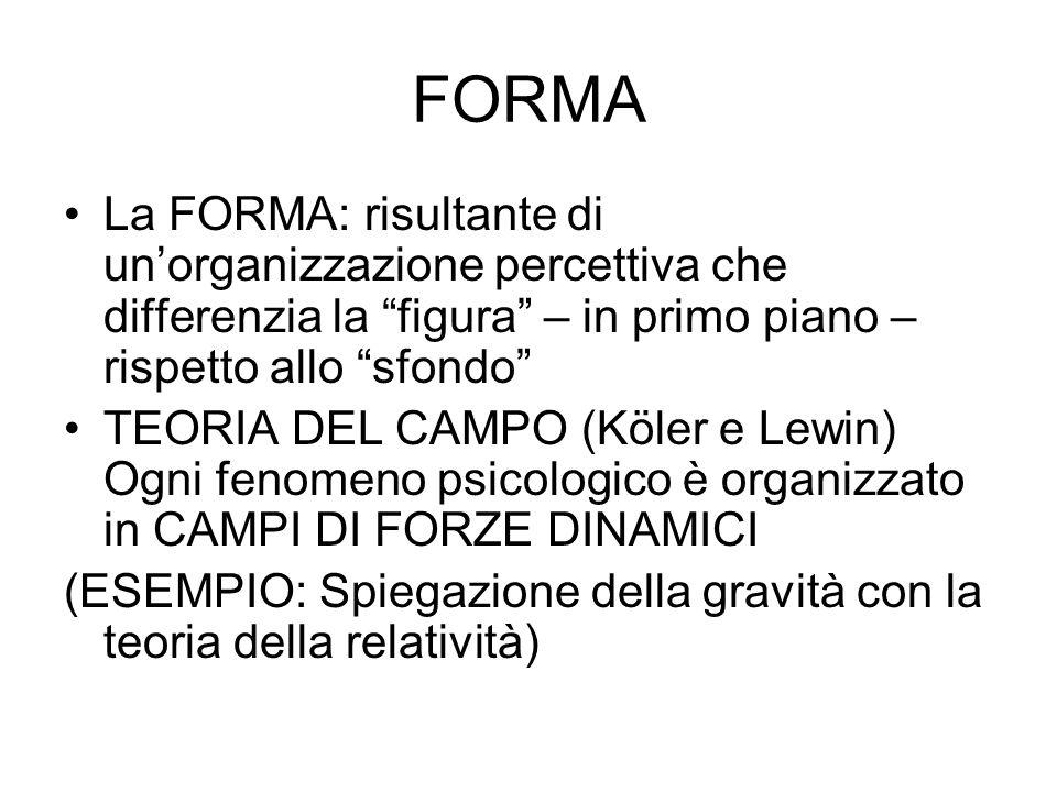 FORMA La FORMA: risultante di unorganizzazione percettiva che differenzia la figura – in primo piano – rispetto allo sfondo TEORIA DEL CAMPO (Köler e