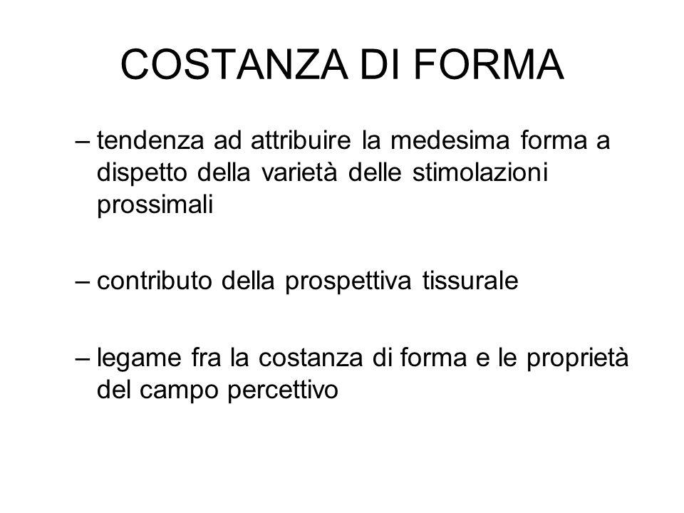 COSTANZA DI FORMA –tendenza ad attribuire la medesima forma a dispetto della varietà delle stimolazioni prossimali –contributo della prospettiva tissu